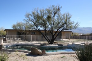 Northeast Tucson Rental Homes